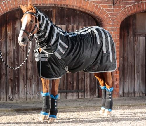 Couverture Magnétique pour chevaux