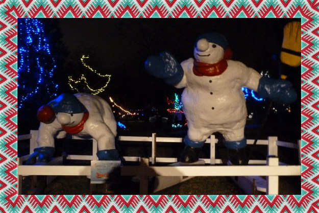 One of the many sites we enjoyed at Christmas in the Park in Simcoe.