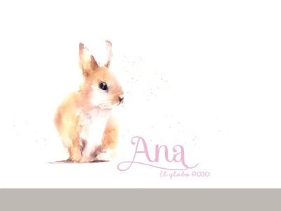 Protegido: Ana – Album de Bautizo