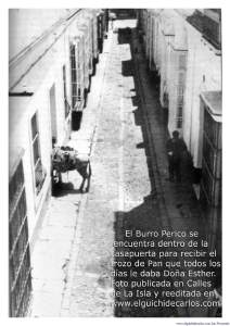Borrico Perico
