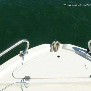 Pesca de caballas con delfines en Doñana _ Guadalquivir _ (5)