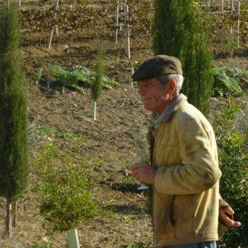 #PeterMaurer #vino #ecologico (3)