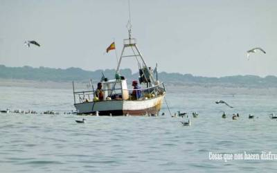 Bonanza vuelve a la mar