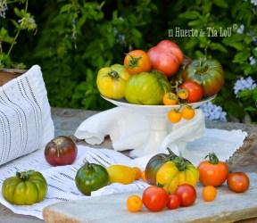 Tertulias gastronómicas del Ateneo de Cádiz : «Tomates con Sabor, Cultivos Sanos y Sabores para Disfrutar»