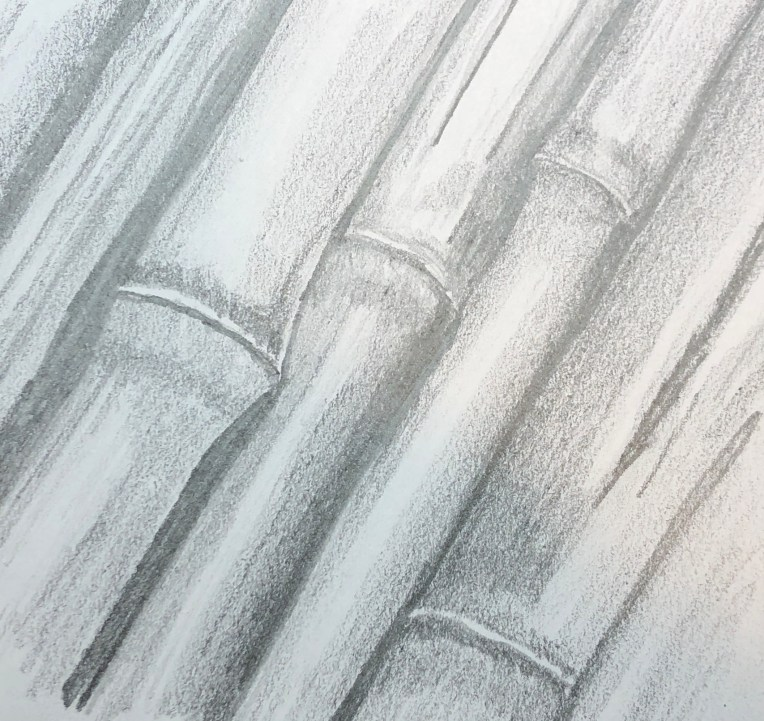 pencil drawing of texture