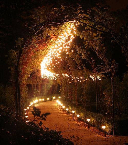 Lighted Path, Brodsworth, England