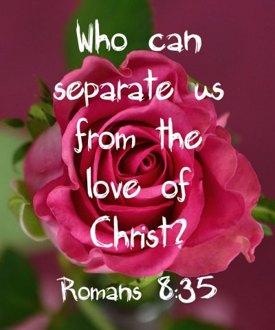 Devotional Who Can Separate Us From The Love Of Christ Romans 8:35