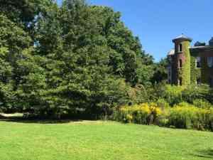 8 Best Parks To Enjoy Summer Days in NYC