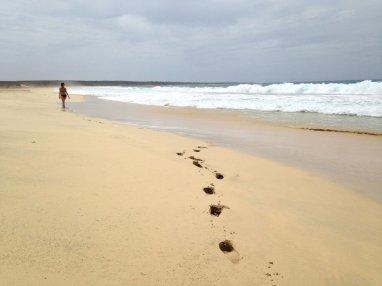 Spiaggia di Santa Monica, Boa Vista, Capoverde