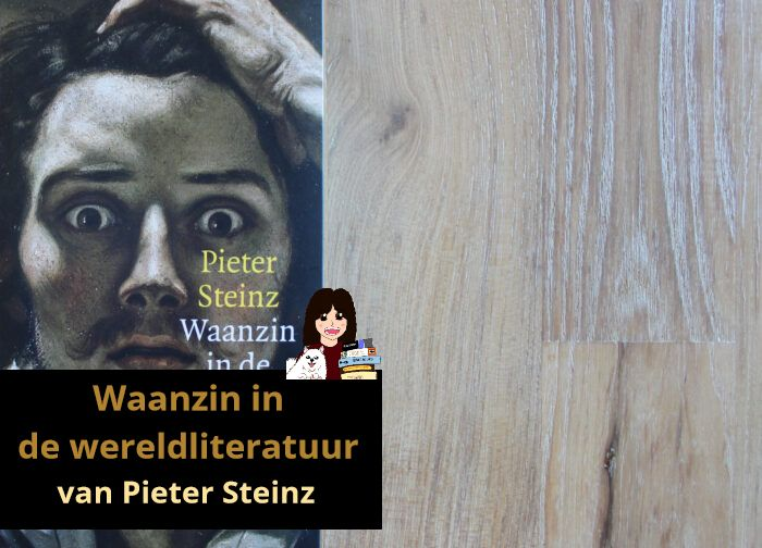 waanzin-in-de-wereldliteratuur-pieter-steinz_header