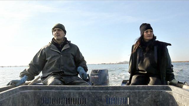 Due Volte Delta - parte seconda: Il pesce siluro è innocente