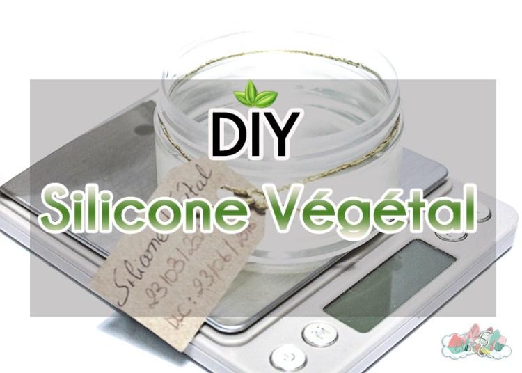 DIY Recette Silicone Eliseandco