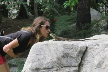 Water Dragon au Jardin Chinois