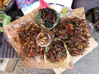 Grenouille blattes marché Battambang Cambodge blog voyage 3