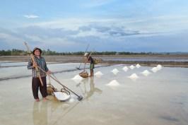 Marais salants Kampot Kep Cambodge blog voyage 17