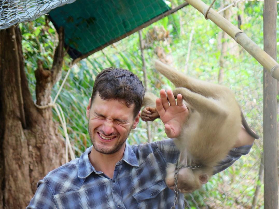 Robin Singe Gibbon Valley Kampot Kep Cambodge blog voyage 27
