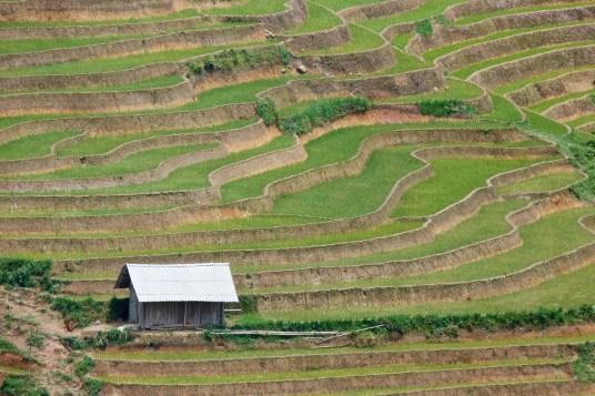 Maison rizières Bilan Vietnam blog voyage 2016 16