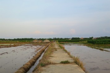 Rizieres Hue Vietnam blog voyage 2016 18