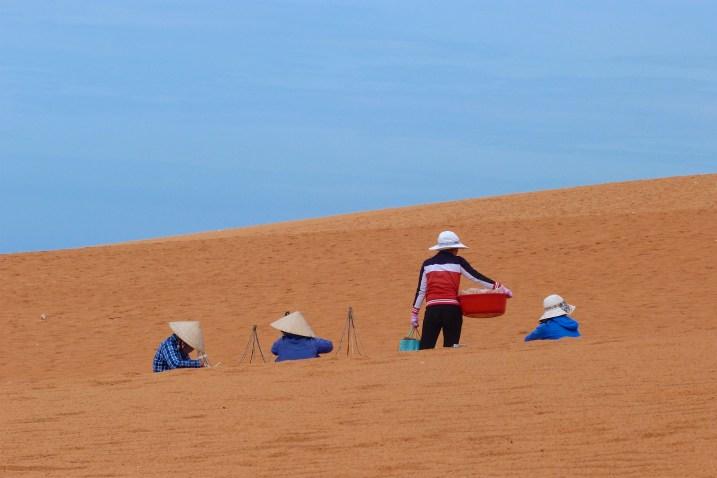 Dunes sable rouge Mui Ne Vietnam blog voyage 2016 17