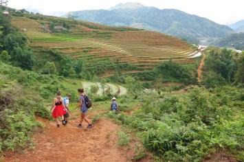 Trek Sapa Vietnam blog voyage 2016 12
