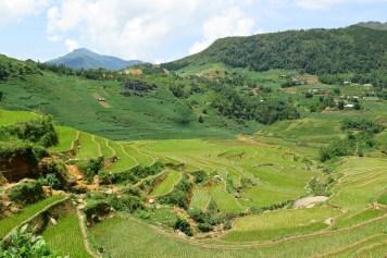 Rizières Trek Sapa Vietnam blog voyage 2016 15