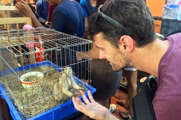 Marché Chatuchak Bangkok Thailande blog voyage 2016 32