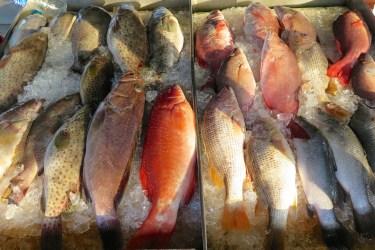 Marché poissons Phuket Thailande blog voyage 2016 6