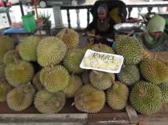 Jack fruits Tanah Rata Cameron Highlands Malaisie blog voyage 2016 25