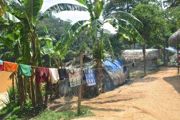 Village Orang Asli Trek Taman Negara Malaisie blog voyage 2016 41