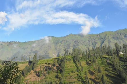 Montée Cemoro lawang bromo-indonesie-blog-voyage-2016-2