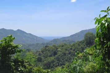 Monkey road senggigi-lombok-indonesie-blog-voyage-2016-30