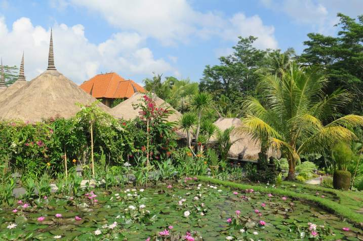 Spa rizières ubud-indonesie-blog-voyage-2016-13