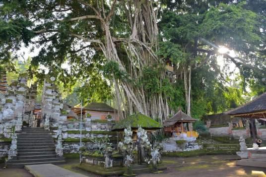 Pura Kehen ubud-indonesie-blog-voyage-2016-34