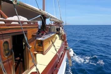 En navigation (remarquez le phoque)