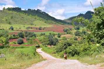 Vers le lac Trek-Kalaw-Inle-Myanmar-blog-voyage-2016 74