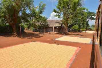 Graines Pyin-Oo-Lwin-Gohteik-Myanmar-blog-voyage-2016 9