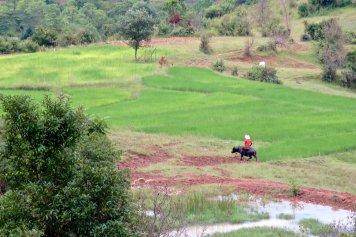 Trek Kalaw Inle Bilan-Myanmar-Birmanie-blog-voyage-2016 27