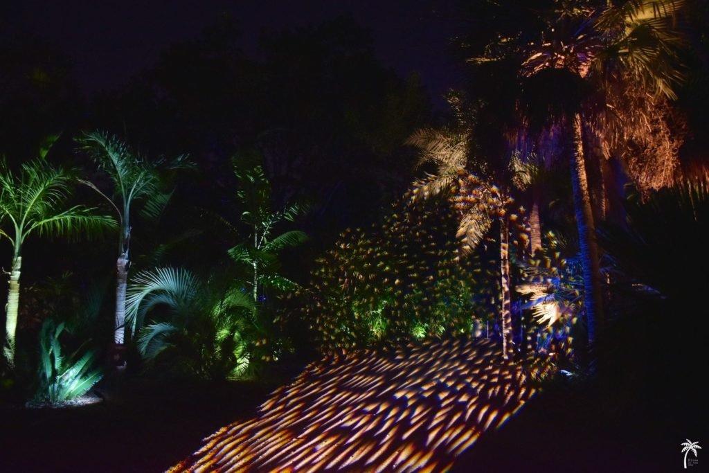 Fairchild garden Un an Floride blog voyage 2019 24