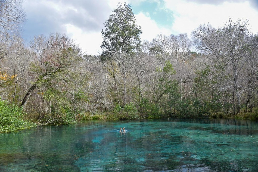 Ichetucknee springs State Park road trip nord Floride blog voyage USA Floride 2019-33