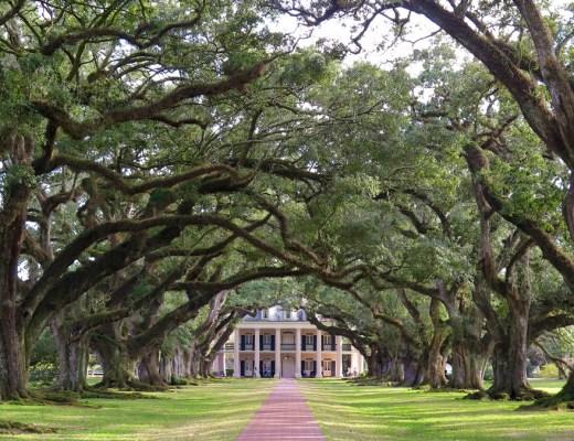 Oak Alley Plantation Elise on the way blog voyage US Louisiana-9 une journée le long du Mississippi