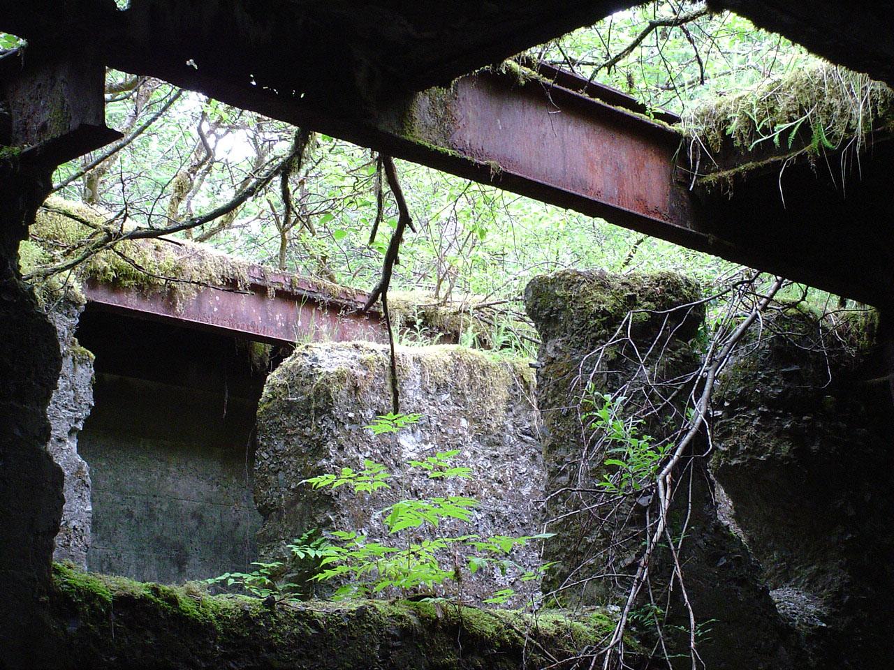 Photography Of Treadwell Mine Ruines Douglas Island Alaska
