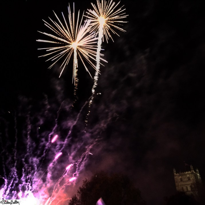 Palm Tree Shaped Fireworks at Tewkesbury - Around Here...November 2015 at www.elistonbutton.com - Eliston Button - That Crafty Kid – Art, Design, Craft & Adventure.
