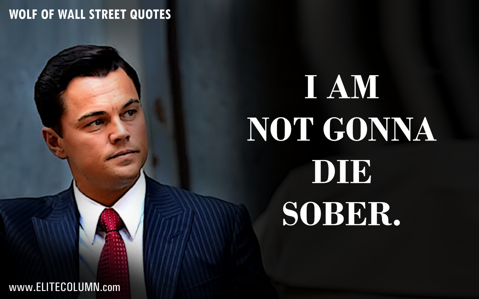 Wolf Of Wall Street Quotes Hd Wallpaper 12 Epic Leonardo Dicaprio Quotes From Quot The Wolf Of Wall