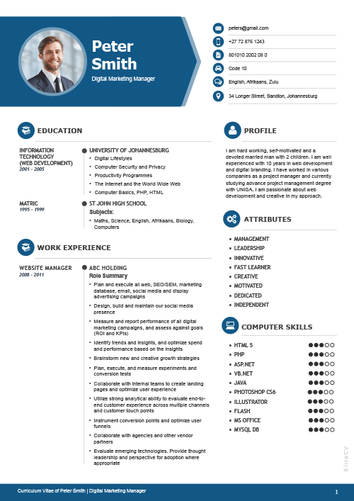 Professional CV2 blue 1