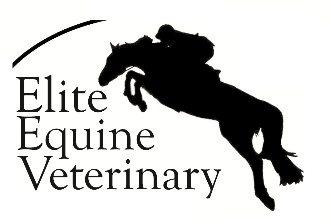 Elite Equine Veterinary