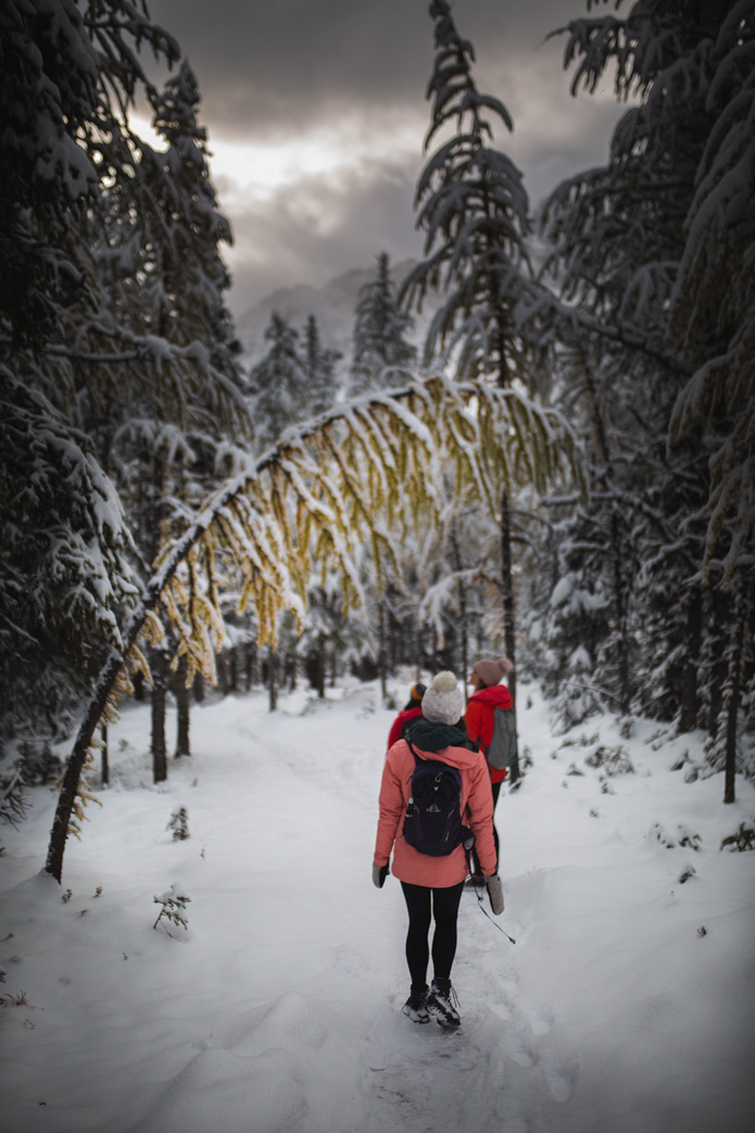 Larch Valley hike 2018