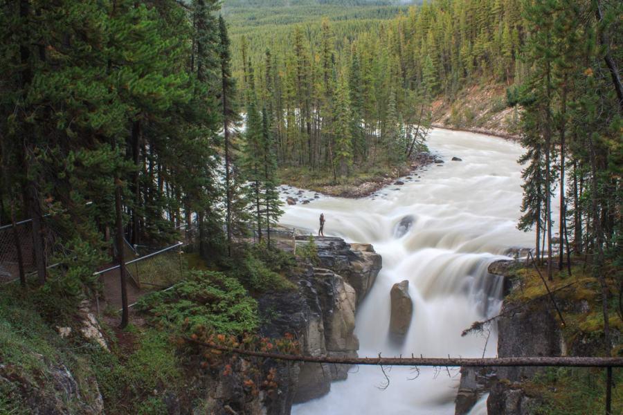 Sunwapta Falls Jasper