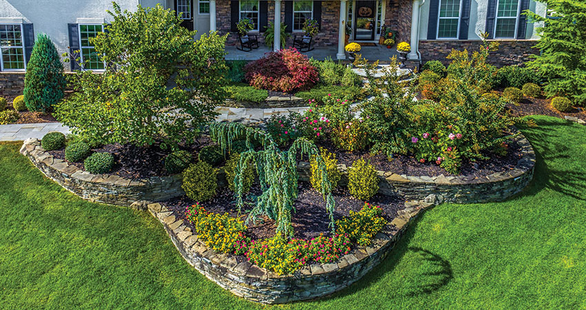 Landscape Maintenance Elite Landscaping