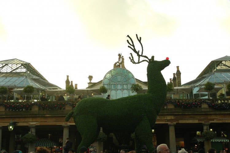 A giant reindeer at Covent Gardens!