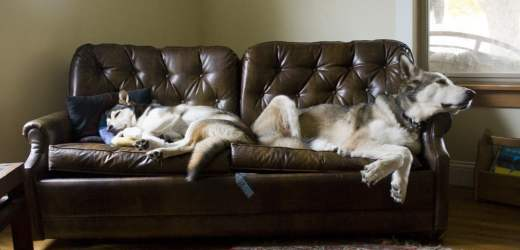What is Couch Surfing? Pros and Cons